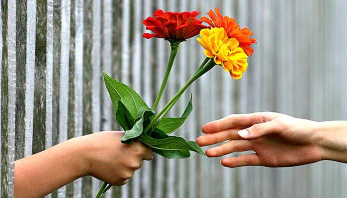 Sreća dolazi od davanja i pomaganja, ne od kupovanja i posjedovanja