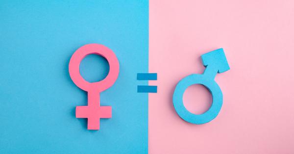 Online radionica: Rodna ravnopravnost u Bosni i Hercegovini, položaj žena u društvu, politici i porodici